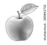 Apple In Engraving Style....