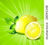 lemon  citrus fruit. vector. | Shutterstock .eps vector #28092148