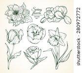 set of spring flowers magnolia... | Shutterstock .eps vector #280972772