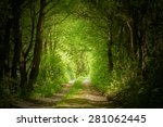 magic forest path | Shutterstock . vector #281062445