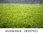 closeup detail of texture in...   Shutterstock . vector #28107421