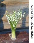 buget of garden lilies of the... | Shutterstock . vector #281140892