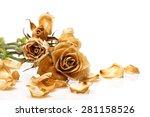 Dry Rose Flower On White...