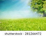 grass meadow in the park | Shutterstock . vector #281266472