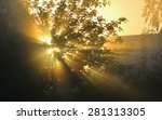 The Sun's Rays Passing Through...