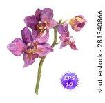 watercolor  vector orchid flower | Shutterstock .eps vector #281340866