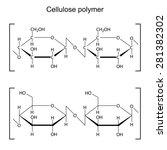 cellulose polymer molecule  ... | Shutterstock .eps vector #281382302