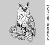 Vector Owl On A Branch 3...