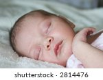 little baby peacefully asleep | Shutterstock . vector #2814476