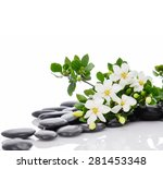still life with three white... | Shutterstock . vector #281453348