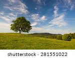 gallows hill   memorial maple... | Shutterstock . vector #281551022