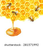 watercolor honeycomb and bee... | Shutterstock .eps vector #281571992