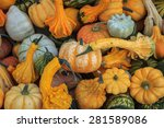 Pumpkins And Gourds In Various...