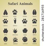 set of safari animal tracks  | Shutterstock .eps vector #281716955