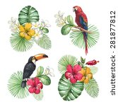 watercolor illustrations of... | Shutterstock . vector #281877812