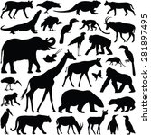 zoo animals collection   vector ... | Shutterstock .eps vector #281897495