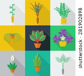 illustration of houseplants ... | Shutterstock .eps vector #281902898