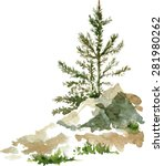 young pine trees and rocks... | Shutterstock .eps vector #281980262