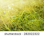 Abstract Natural Backgrounds...