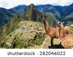 Llama At Historic Lost City Of...