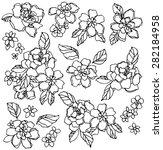 flower illustration | Shutterstock .eps vector #282184958