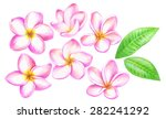 handmade color pencils drawing... | Shutterstock .eps vector #282241292