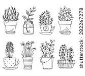 flowers in pots painted black... | Shutterstock .eps vector #282267278