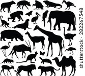 zoo animals collection   vector ... | Shutterstock .eps vector #282267548