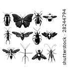 Insect and bug collection in detailed vector silhouette - stock vector