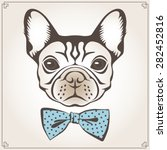 vector illustration of the dog...   Shutterstock .eps vector #282452816