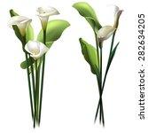 Floral Background. Set Of...