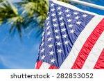 american flag closeup with palm
