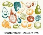 vector collection of ink hand... | Shutterstock .eps vector #282875795