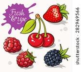 set of berries. vector... | Shutterstock .eps vector #282969566