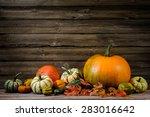 Thanksgiving Day Autumnal Still ...