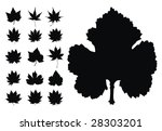 beautiful maple leaves... | Shutterstock .eps vector #28303201