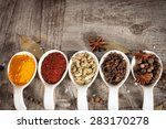 spices. spice in white bowls... | Shutterstock . vector #283170278
