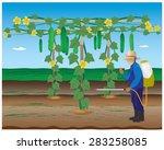 agriculturist spraying... | Shutterstock .eps vector #283258085
