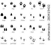 Vector Set Of 20 Black Animal...