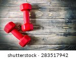 pair of orange 3 kg dumbbells... | Shutterstock . vector #283517942