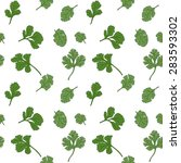 cilantro seamless pattern with... | Shutterstock .eps vector #283593302