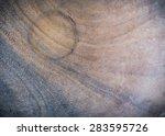 wood curve pattern texture... | Shutterstock . vector #283595726