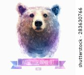 Vector Set Of Animals. Bear...