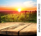 vineyard at sunset in the... | Shutterstock . vector #283819022