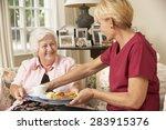 helper serving senior woman... | Shutterstock . vector #283915376