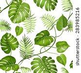tropical leaves design for... | Shutterstock .eps vector #283985216