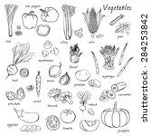 vector seamless vegetables set | Shutterstock .eps vector #284253842