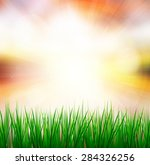 fresh spring green grass with... | Shutterstock . vector #284326256