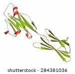 programmed death ligand 1  pd... | Shutterstock . vector #284381036