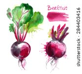 set of vegetables painted with... | Shutterstock .eps vector #284403416